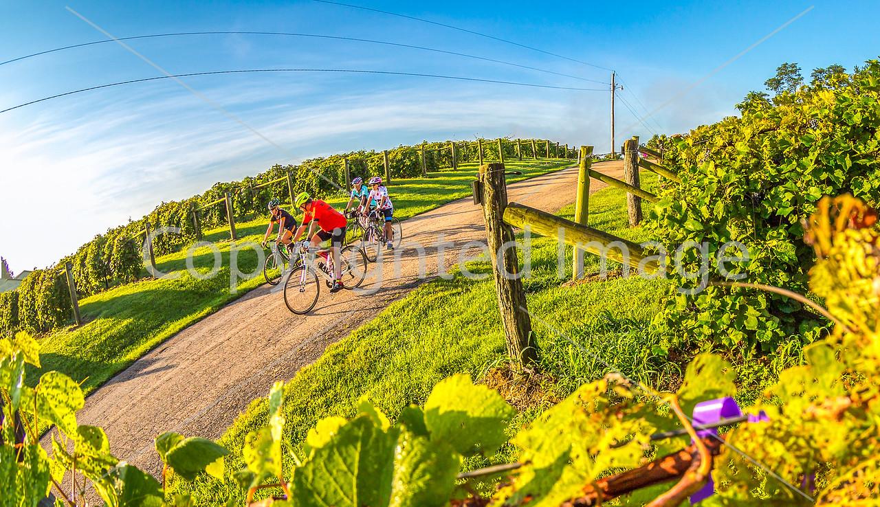 BikeMO 2016 - C2-0089 - 72 ppi-2