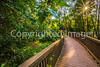 Columbia Bottom Conservation Area - Picture Perfect event - 8-11-17 – C2-30057 - 72 ppi
