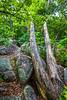 Elephant Rocks State Park, Missouri - C2-0123 - 72 ppi