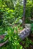 Elephant Rocks State Park, Missouri - C2-0125 - 72 ppi