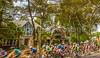 Tour de Francis 2015 - C2-0262 - 72 ppi-2