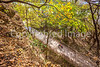 Katy Trail along Missouri River near Rocheport, MO - C2-0404 - 72 ppi