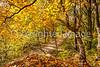 Katy Trail near Rocheport, MO - C1-0465 - 72 ppi