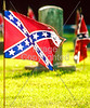 Civil War - Confederate flags over graves, Missouri   - 72 ppi - 3
