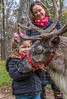 Reindeer, 2nd shoot - C3-0101 - 72 ppi-3