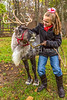 Reindeer, 2nd shoot - C2-0124 - 72 ppi-3