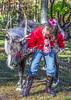 Reindeer - C1-0103 - 72 ppi