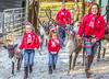 Reindeer - C1-0014 - 72 ppi