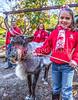 Reindeer - C2-30050 - 72 ppi-2