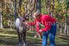 Reindeer - C1-0070 - 72 ppi