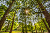 St  Louis Classic 2018 - Tower Grove - C1_D5A0327-Edit- - 72 ppi