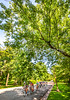 St  Louis Classic 2018 - Tower Grove - C1_D5A0367-Edit- - 72 ppi