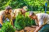The GreenTurf Team - Mike, Cody, Charley - July 2017-0035 - 72 ppi