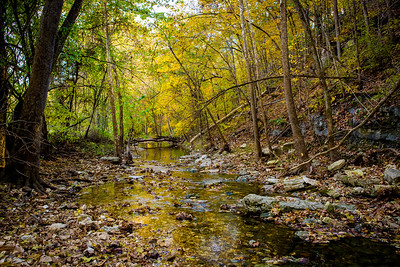 Fall color along Connor Creek in Boone County.  Photo by Kyle Spradley | © Kyle Spradley Photography | www.kspradleyphoto.com