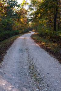 Fall Color on Ozark Forest Roads