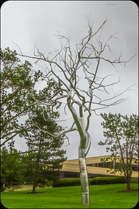 Stainless Steel Tree at Art Museum