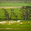 "The Monopoly Marsh at sunrise at Mingo National Wildlife Refuge near Puxico, Missouri. <br /> <br /> Photo by Kyle Spradley | © Kyle Spradley Photography |  <a href=""http://www.kspradleyphoto.com"">http://www.kspradleyphoto.com</a>"