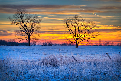 After a snow storm in Boone County, a sunrise lit up a pasture outside of Columbia.  Photo by Kyle Spradley | www.kspradleyphoto.com