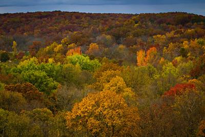 Midwestern Fall