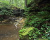 MNB-41: Ephemeral Waterfall (Don Robinson State Park)