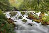 MNB-014: First Waterfall Below Maramec Spring