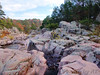 The Castor River Shut-Ins<br /> Amidon Memorial Conservation Area