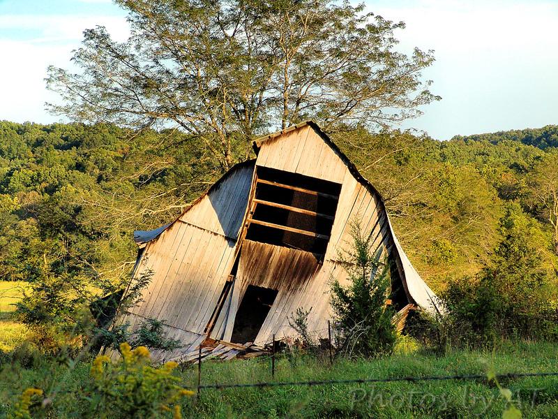 Amidon Memorial Conservation Area