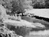 Dillard Mill<br /> - Infrared Photo -