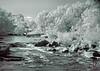 Millstream Gardens Conservation Area<br /> Tiemann Shut-ins<br /> - Infrared Photo -