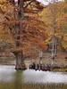 Mingo National Wildlife Refuge