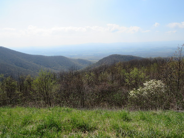 Shenandoah National Park 2016