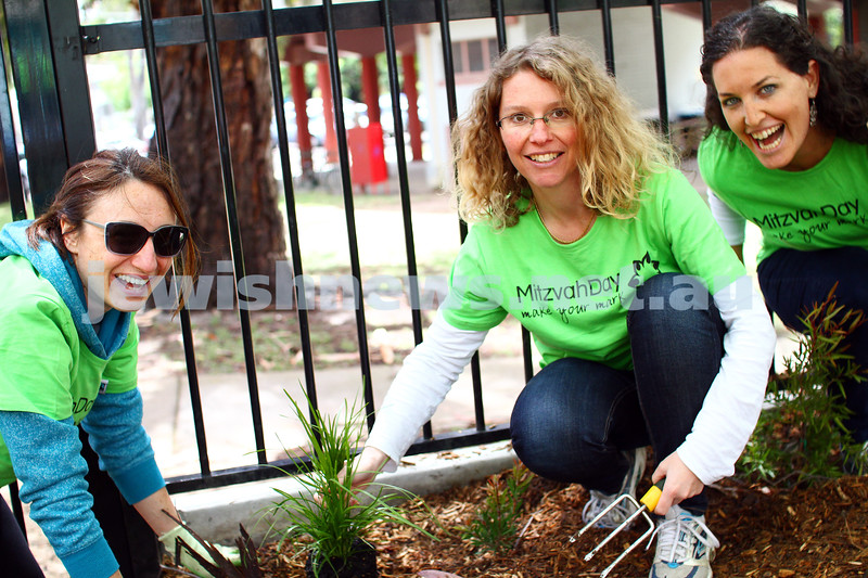16-11-14. Mitzvah Day, Melbourne 2014.  Spiritgrow and Ardoch Youth Foundation working in a community garden for disadvantaged children. Photo: Peter Haskin
