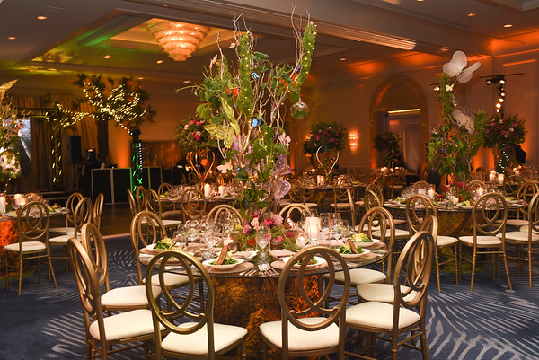 Location&Details ~ SF Four Seasons Mitzvah ~ Gabby