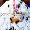 McBoatPhoto-ShaynaBrunch-85