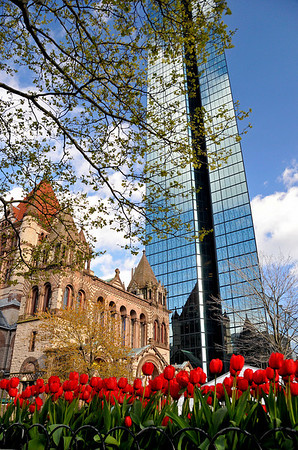 Even more spring in Copley Square.