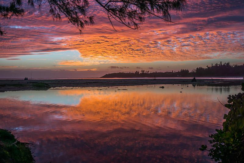 Pele Sunrise