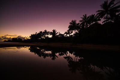 Palm reflect