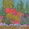 Red Bush #3 12 x 12 Mixed