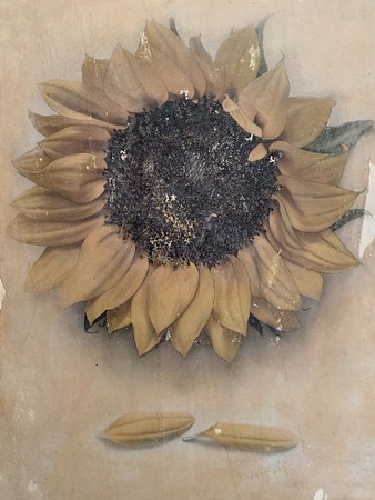 This is the center of the Sunflower triptych, but it could also be its own standalone piece.
