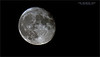Thanks to Timothy Story for the help with last nights shoot., I was happy with the a7r4's performance with the moon.  200-600 OSS lens + the 1.4 tel-converter, so 840 mm in 35mm equivalent. <br /> <br /> <br /> Again, I am very happy with Sony, and Patrick Ng with Downtown Camera.