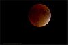 Blood Moon - September 27th, 2015<br /> Swarovski Spotting Scope