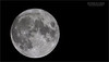 This is the second edit from the September Full moon shoot.<br /> <br /> The full story is with the next image.  This image was taken with a clear sky, and no clouds, but still having some local distortion.  Taking these images from within St. Catharines will always create issues.  Maybe I should have gone for a drive south to an open area in the country.<br /> <br /> Slightly different setting here, with a bright, clear moon.  F13 helped with the sharpness, 160 ISO for low noise, 1/320th of a second shutter speed would freeze the movement.  And the crop sensor, plus the teleconverter gave me the reach needed for a clean shot.<br /> <br /> Maybe a Milky Way shot next week! Take care!