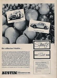 Bruggerman & Co German Importer