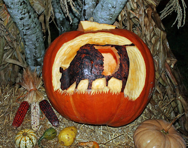 All hallows cow