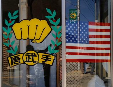 Window with fist and flag