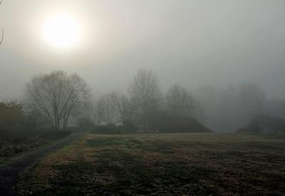 Grey morning