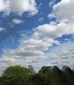 Clouds over the park