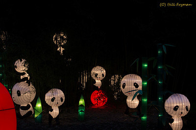 Panda's Paradise  -- The panda lanterns can be found in front of the Garden's bamboo, on the ground almost hidden in the bamboo, and even climbing some of the larger bamboo plants.