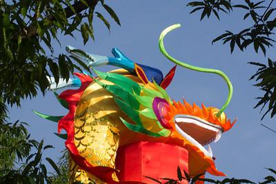 A dragon's head high among the trees