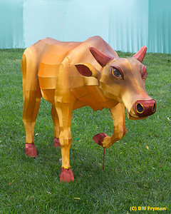 An interesting bovine.  Not sure if he is in his final location or will be moved to another area before the Festival.